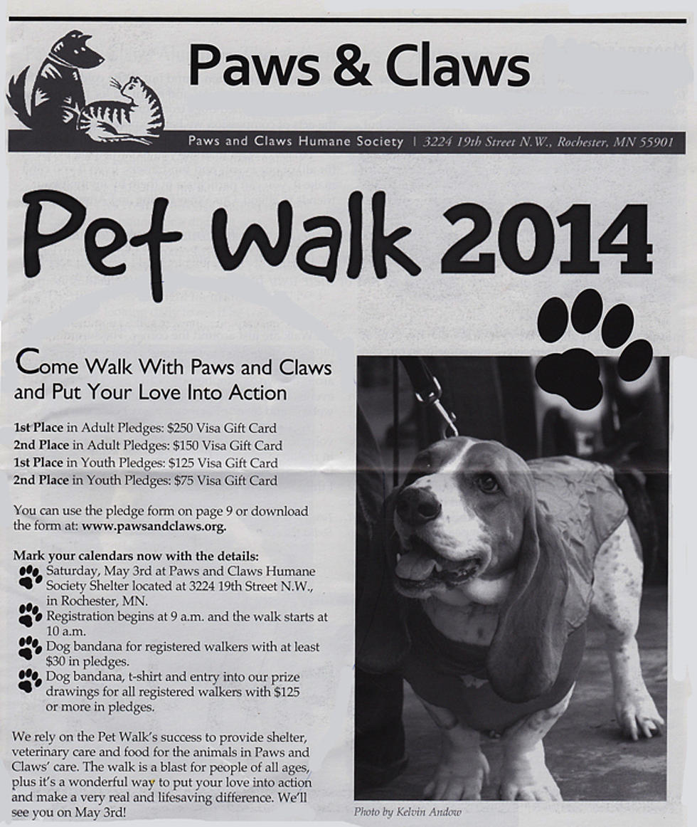 Pet Walk 2014 With Paws & Claws